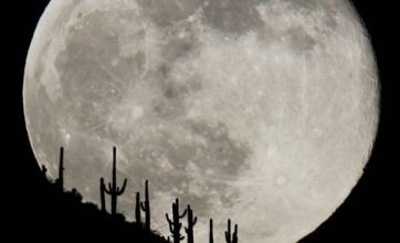 Nasa planet-finder reveals five new worlds