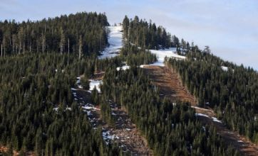 Vancouver faces Winter Olympics worry over lack of snow