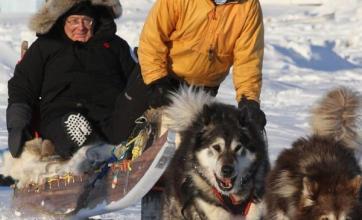Finance chiefs go dogsledding