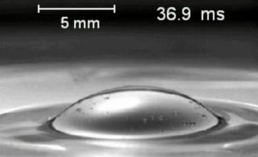How bubbles really pop revealed by Harvard scientists