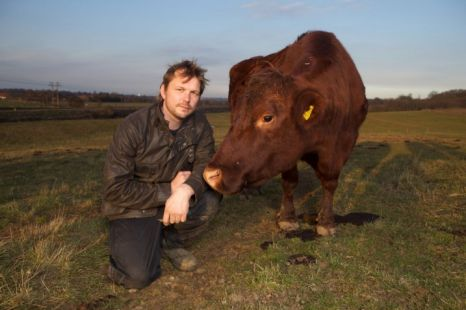 Jimmy Docherty in The Private Life Of Cows, BBC2, 8pm