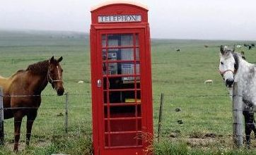 Most boring calendar in the world? Calendar of Welsh telephone boxes fails to sell a single copy