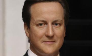 Cameron waxwork 'looks so real'