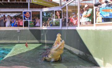 Harry the 'psychic' croc picks Australian PM to win