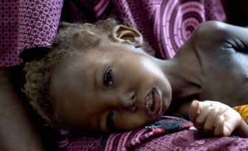 Hunger crisis still threatening Niger, say aid workers