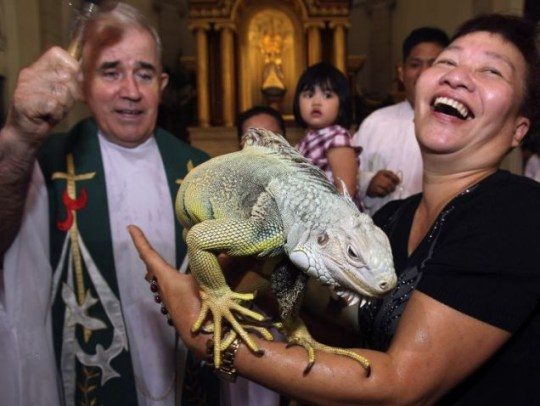 Blessed: Father Michael Martin and Ming Sandig, with her iguana (Pic: AP)