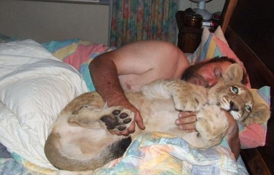 Andre Potgieter's pet cat likes a cuddle