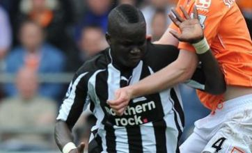 Wilson Palacios 'offered to Newcastle' as part of Spurs Cheik Tiote bid