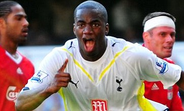 Sebastien Bassong 'offered to Stoke in Tottenham bid for Ryan Shawcross'