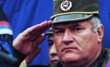 David Cameron hails Ratko Mladic arrest