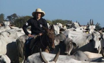 Lucas Leiva enjoys Liverpool summer break on his cattle ranch