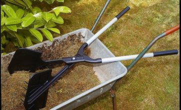 Mobile phone and garden equipment thefts on rise, survey reveals