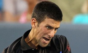 Novak Djokovic hits a French reporter in the balls during interview