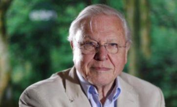 David Attenborough joins Richard Dawkins in calling for creationism ban