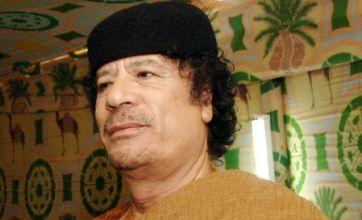 Colonel Gaddafi loyalists attempt ambush of Bani Walid