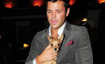 TOWIE's Mark Wright and Lauren Goodger agree joint custody of dog