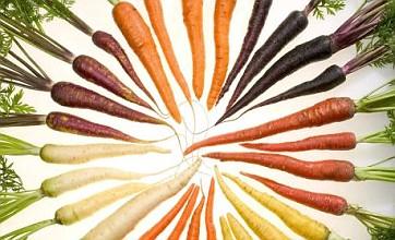 Multicoloured carrots grown in Norfolk hit the shelves of Tesco