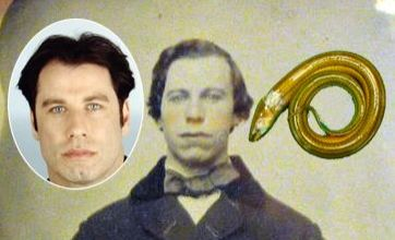 Eel up a penis v John Travolta 1860 picture: Freak Out