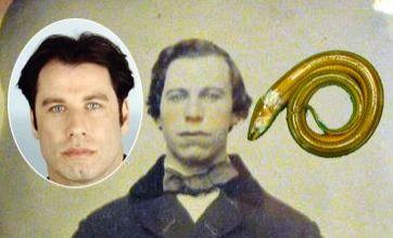 Eel up a penis v John Travolta 1860 picture: Freak Out
