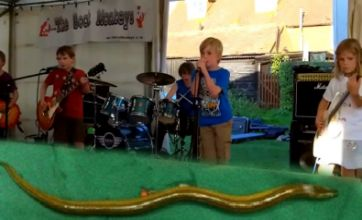 Freak Out: Eel up a penis v The Mini Band child rockers