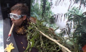 Pat Sharp triumphs in I'm A Celebrity trial after 'scamming' viewers