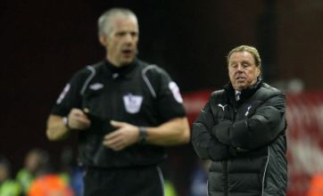 Spurs manager Harry Redknapp blasts referee Chris Foy after defeat at Stoke