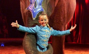 Travelling circuses banned from using wild animals in shows