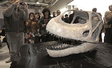 Dinosaurs could have ruled the water, not the earth – claims scientist