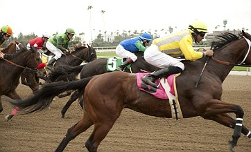 Luck proves a horse-racing series can be hard work