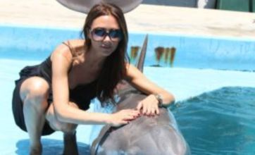 Victoria Beckham flashes a rare smile as she cosies up to a dolphin