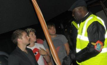 Niall Horan turned away from One Direction pal Liam Payne's party