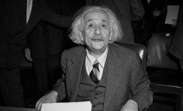 Albert Einstein's brain available to download as iPad app