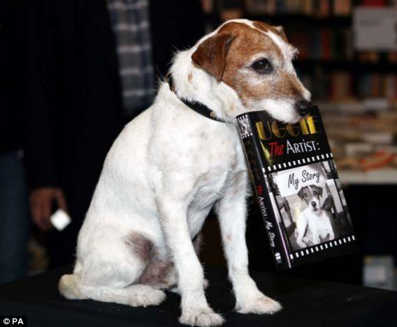 Top pet buys – Top cat tales and dog novels
