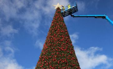 Stuff your real Christmas tree – fake trees are much better and here's why