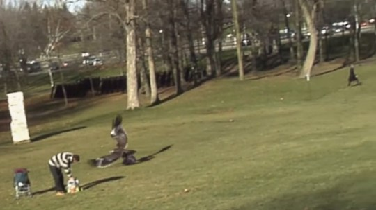 golden eagle tries to snatch toddler