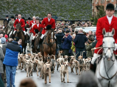 Foxhunting ban early repeal ruled out by government
