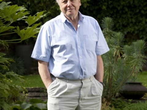 David Attenborough: I'm not an animal lover