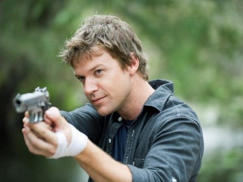 The Glades boxset is just the right side of obnoxious