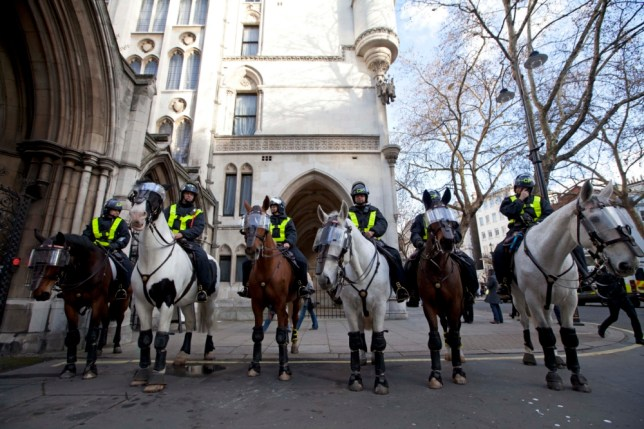 Police horses, sausage roll
