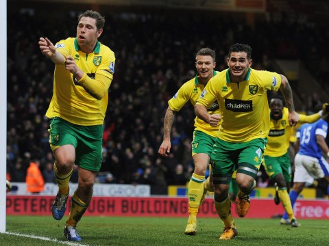 Grant Holt bags the winner as Norwich come from behind to stun Everton