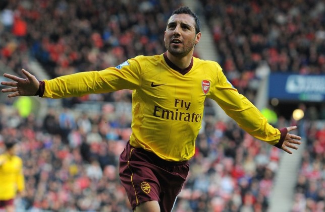 Santi Cazorla's first-half strike was enough to hand Arsenal victory (Picture: Getty)