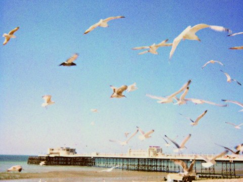 Forget Instagram, photographer uses 70s Polaroid camera for nostalgic seaside snaps