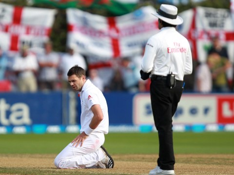 New Zealand wickets harm 'the spectacle of cricket', warns England bowling coach David Saker