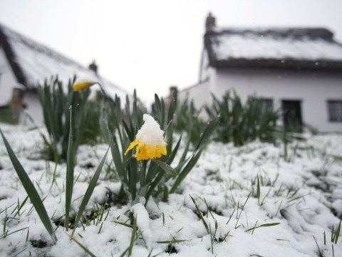 Gallery: First day of spring welcomed by snow and freezing conditions
