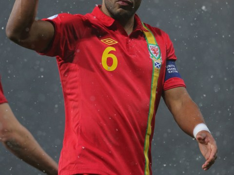 Ashley Williams: It would be 'stupid' for Wales to sack Chris Coleman