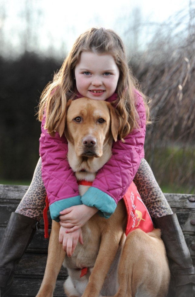 Elena Hughes, 6, and her labrador Maisie, who detects when she requires medication for her diabetes