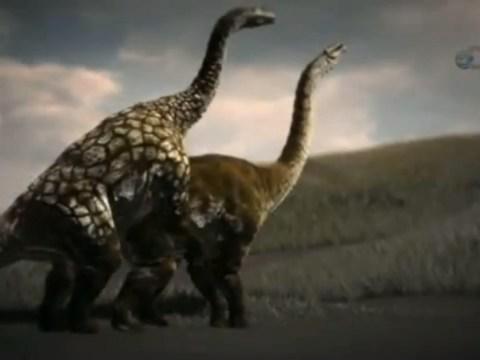 Do you think he sore-arse? Dinosaur sex secrets revealed