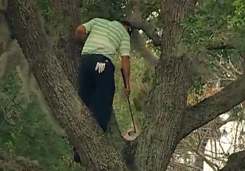 Sergio Garcia escapes from a tree as storms halt Tiger Woods' bid to reclaim top spot