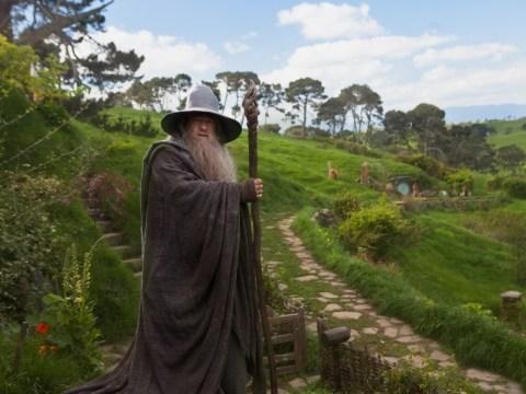 Ian McKellen: Gandalf isn't gay