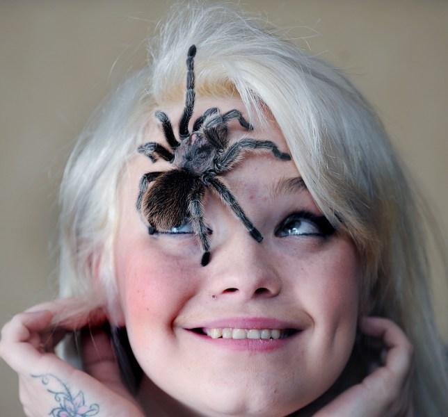 Former arachnophobe Cassandra Tainsh with Pandora